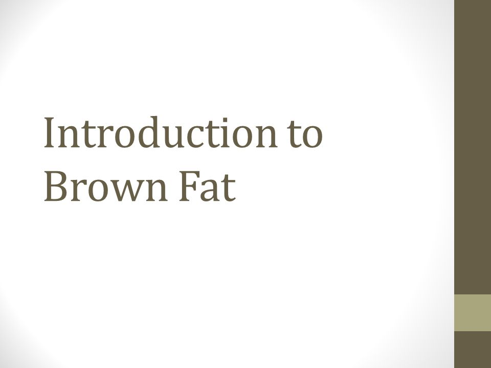Introduction to Brown Fat