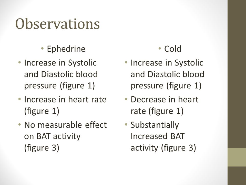 Observations Ephedrine Increase in Systolic and Diastolic blood pressure (figure 1) Increase in heart rate (figure 1) No measurable effect on BAT activity (figure 3) Cold Increase in Systolic and Diastolic blood pressure (figure 1) Decrease in heart rate (figure 1) Substantially Increased BAT activity (figure 3)