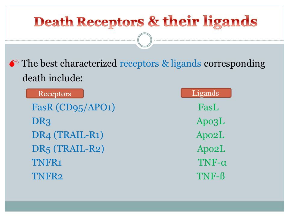  The best characterized receptors & ligands corresponding death include : FasR (CD95/APO1) FasL DR3 Apo3L DR4 (TRAIL-R1) Apo2L DR5 (TRAIL-R2) Apo2L TNFR1 TNF-α TNFR2 TNF-ß Ligands Receptors