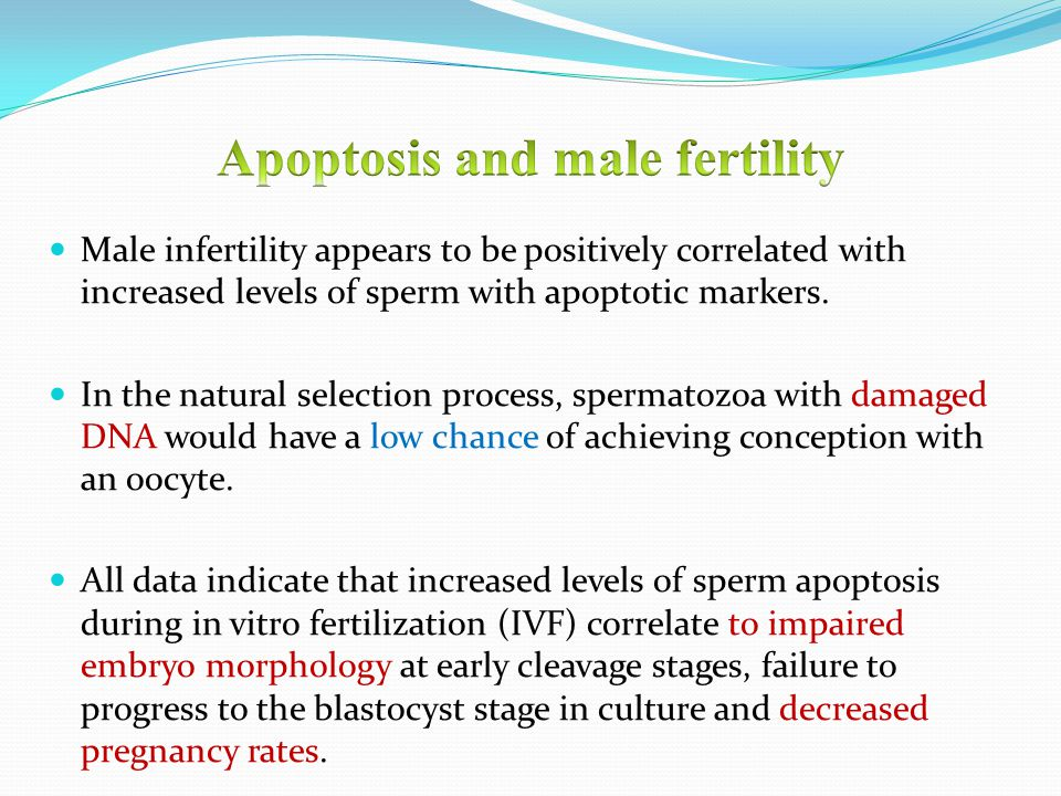 Male infertility appears to be positively correlated with increased levels of sperm with apoptotic markers. In the natural selection process, spermato