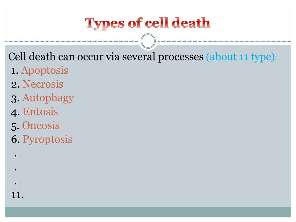 Cell death can occur via several processes ( about 11 type ) : 1.