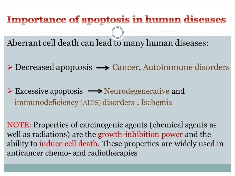 Aberrant cell death can lead to many human diseases:  Decreased apoptosis Cancer, Autoimmune disorders  Excessive apoptosis Neurodegenerative and immunodeficiency (AIDS) disorders, Ischemia NOTE: Properties of carcinogenic agents (chemical agents as well as radiations) are the growth-inhibition power and the ability to induce cell death.