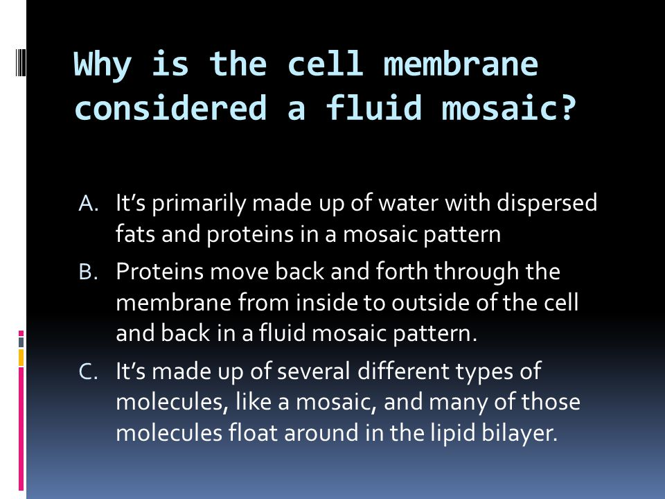 Why is the cell membrane considered a fluid mosaic? A. It's primarily made up of water with dispersed fats and proteins in a mosaic pattern B. Protein