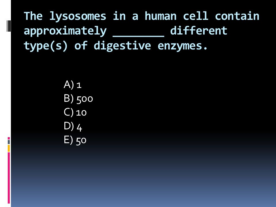 The lysosomes in a human cell contain approximately ________ different type(s) of digestive enzymes. A) 1 B) 500 C) 10 D) 4 E) 50