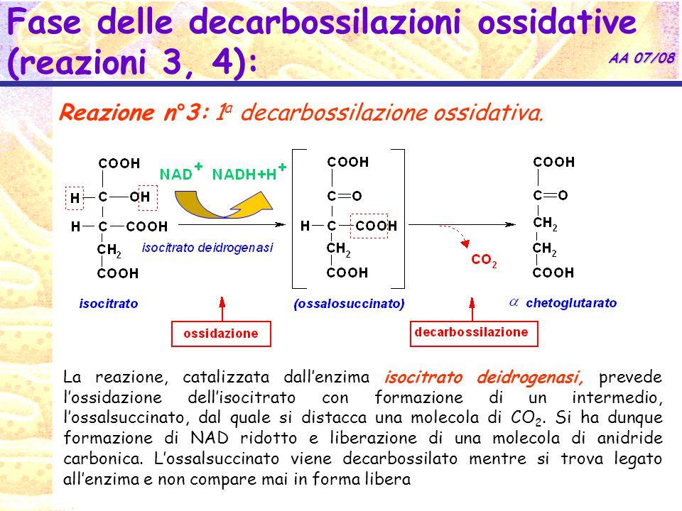 AA 07/08 Fase delle decarbossilazioni ossidative (reazioni 3, 4): Reazione n°3: 1 a decarbossilazione ossidativa.