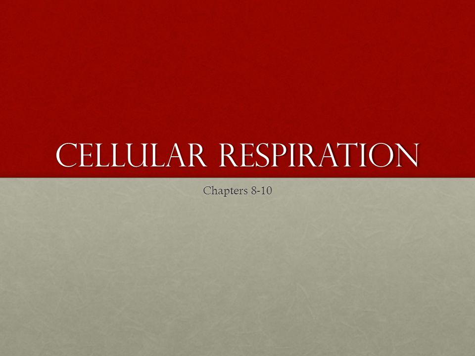 Redox Reactions Reduction vs.OxidationReduction vs.