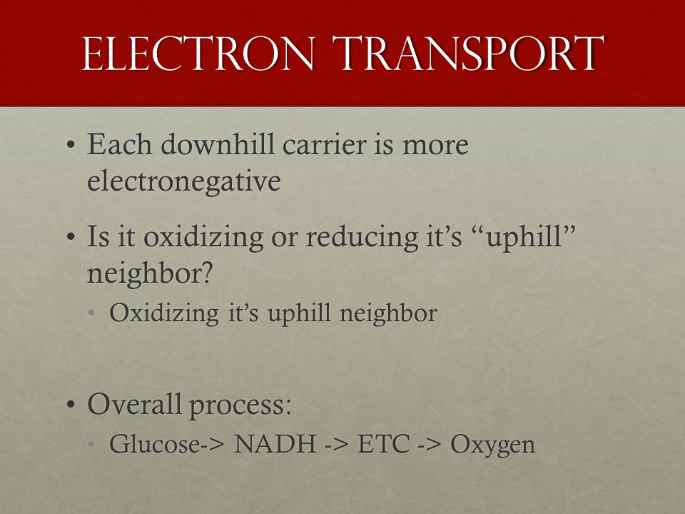 Electron Transport Each downhill carrier is more electronegativeEach downhill carrier is more electronegative Is it oxidizing or reducing it's uphill neighbor Is it oxidizing or reducing it's uphill neighbor.