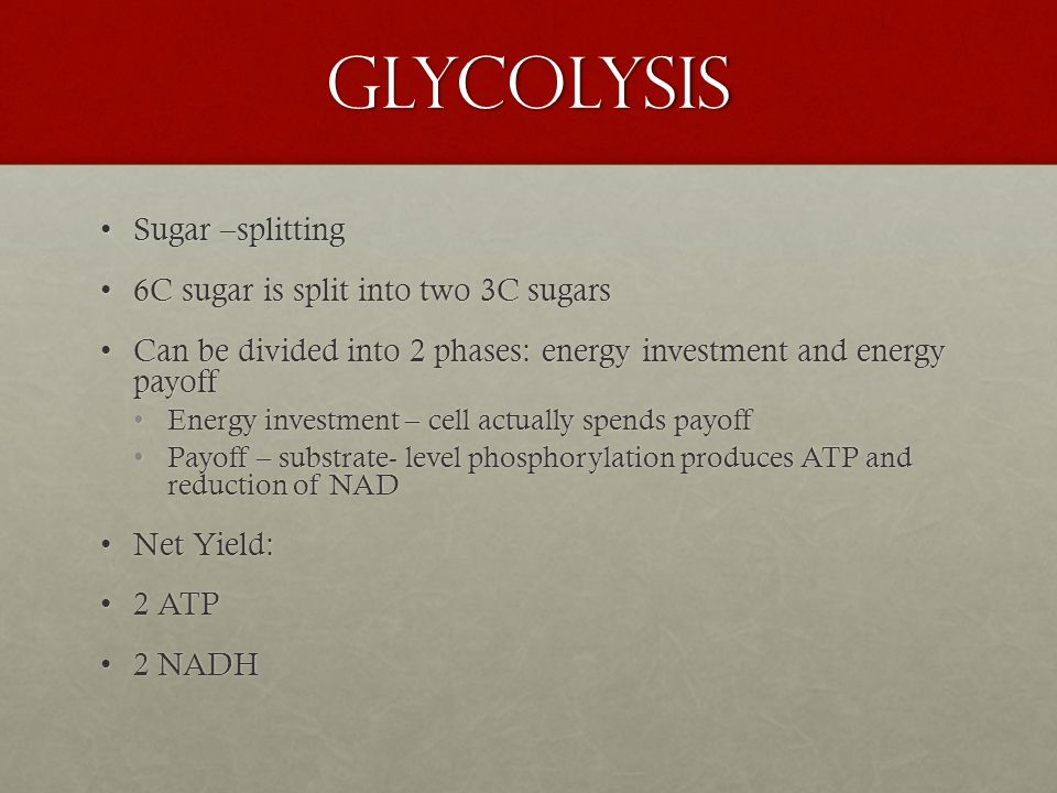 Glycolysis Sugar –splittingSugar –splitting 6C sugar is split into two 3C sugars6C sugar is split into two 3C sugars Can be divided into 2 phases: energy investment and energy payoffCan be divided into 2 phases: energy investment and energy payoff Energy investment – cell actually spends payoffEnergy investment – cell actually spends payoff Payoff – substrate- level phosphorylation produces ATP and reduction of NADPayoff – substrate- level phosphorylation produces ATP and reduction of NAD Net Yield:Net Yield: 2 ATP2 ATP 2 NADH2 NADH
