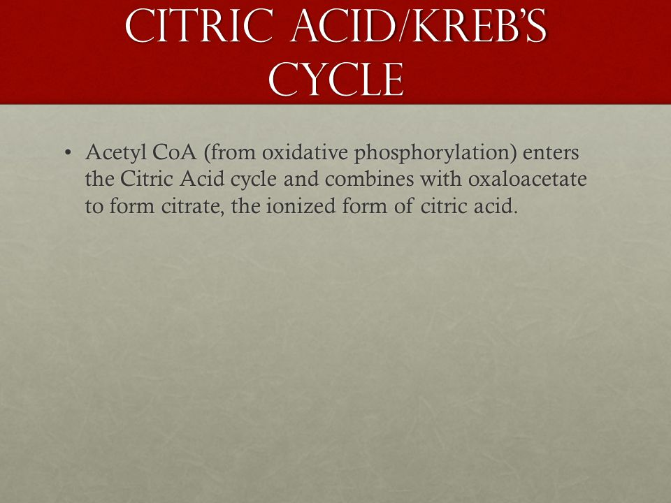 Acetyl CoA (from oxidative phosphorylation) enters the Citric Acid cycle and combines with oxaloacetate to form citrate, the ionized form of citric acid.Acetyl CoA (from oxidative phosphorylation) enters the Citric Acid cycle and combines with oxaloacetate to form citrate, the ionized form of citric acid.