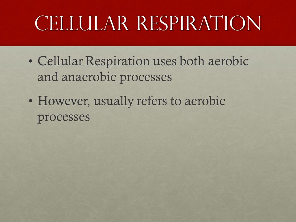 Alternatives to Aerobic Respiration Anaerobic Respiration - uses ETC with a different final electron receptor (besides oxygen) Anaerobic Respiration - uses ETC with a different final electron receptor (besides oxygen) Fermentation - no ETC.