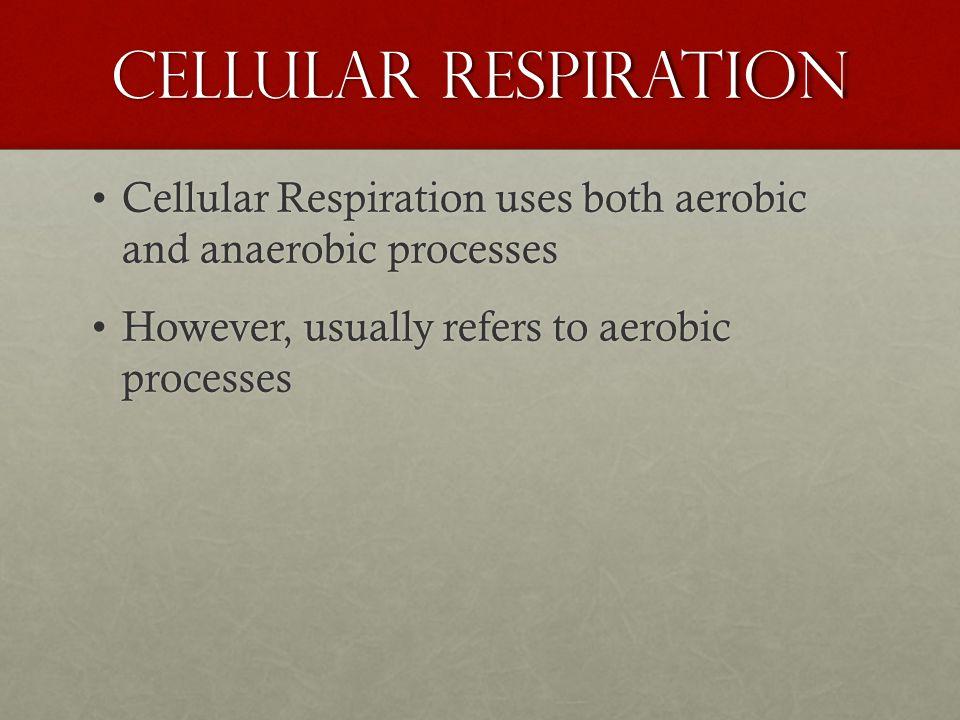 Cellular Respiration C 6 H 12 O 6 +6O 2 -> 6 CO 2 + 6 H 2 O+ Energy (ATP +Heat)