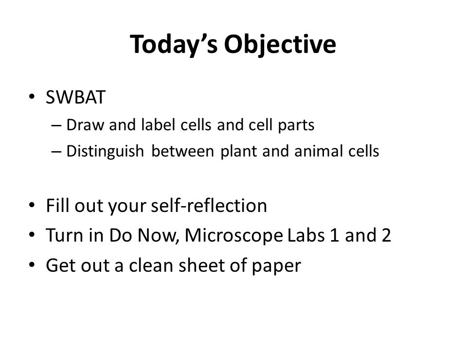 Today's Objective SWBAT – Draw and label cells and cell parts – Distinguish between plant and animal cells Fill out your self-reflection Turn in Do No