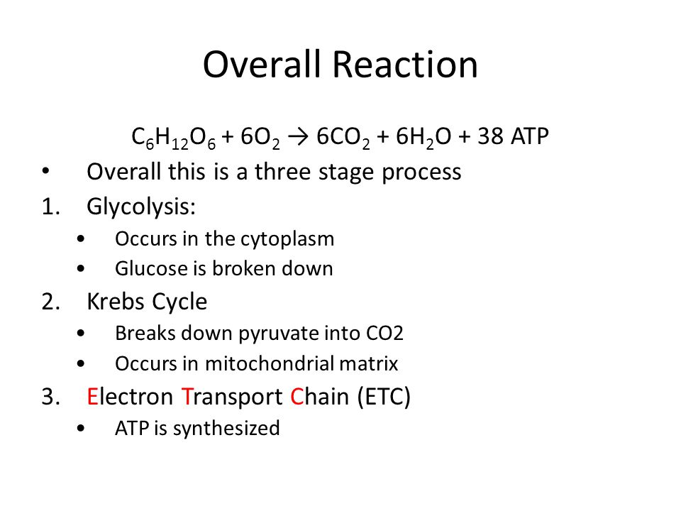 Overall Reaction C 6 H 12 O 6 + 6O 2 → 6CO 2 + 6H 2 O + 38 ATP Overall this is a three stage process 1.Glycolysis: Occurs in the cytoplasm Glucose is broken down 2.Krebs Cycle Breaks down pyruvate into CO2 Occurs in mitochondrial matrix 3.Electron Transport Chain (ETC) ATP is synthesized