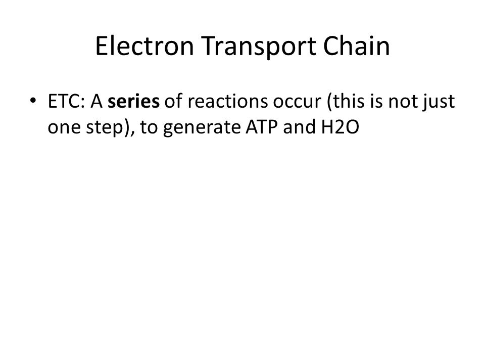 Electron Transport Chain ETC: A series of reactions occur (this is not just one step), to generate ATP and H2O