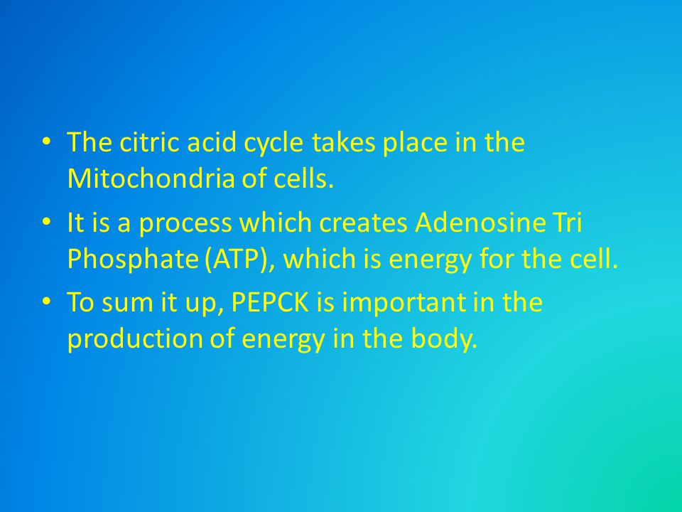 The citric acid cycle takes place in the Mitochondria of cells.