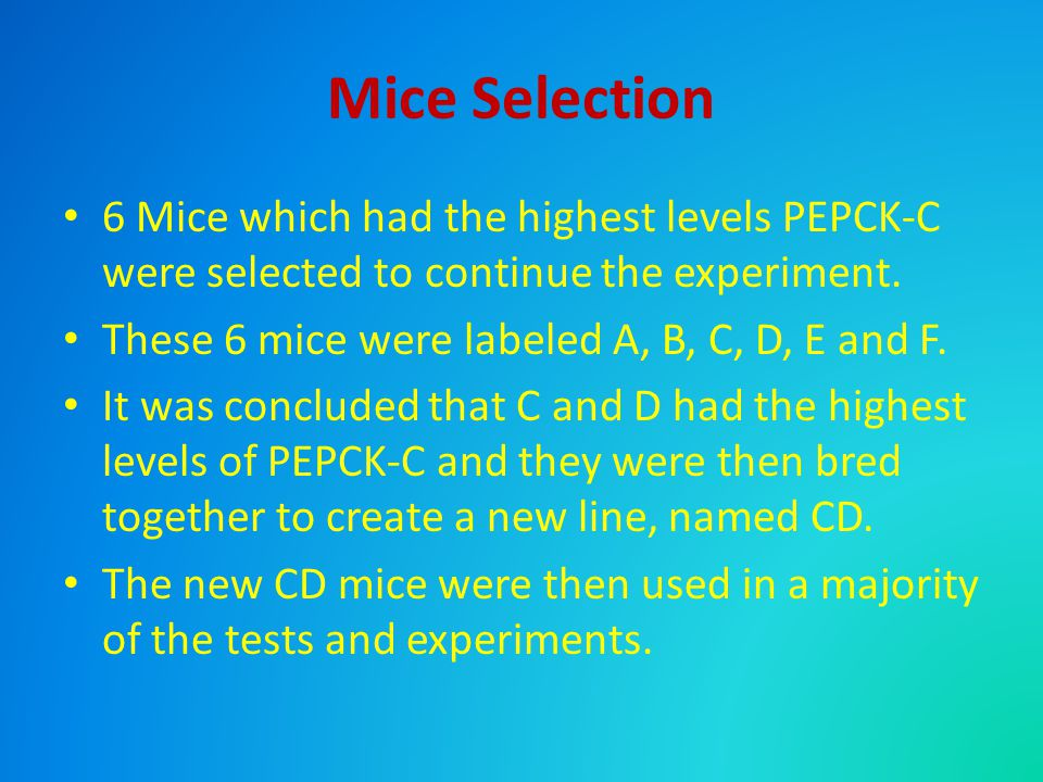 Mice Selection 6 Mice which had the highest levels PEPCK-C were selected to continue the experiment.