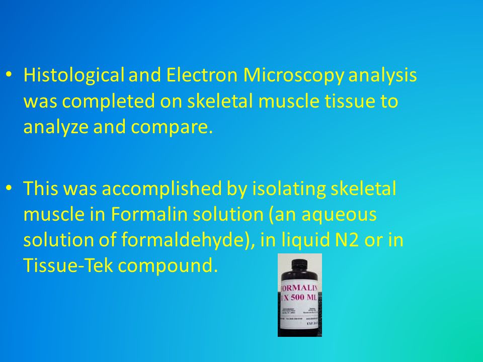 Histological and Electron Microscopy analysis was completed on skeletal muscle tissue to analyze and compare. This was accomplished by isolating skele