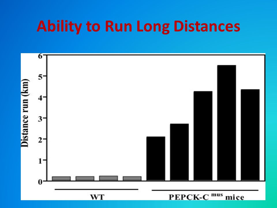 Ability to Run Long Distances