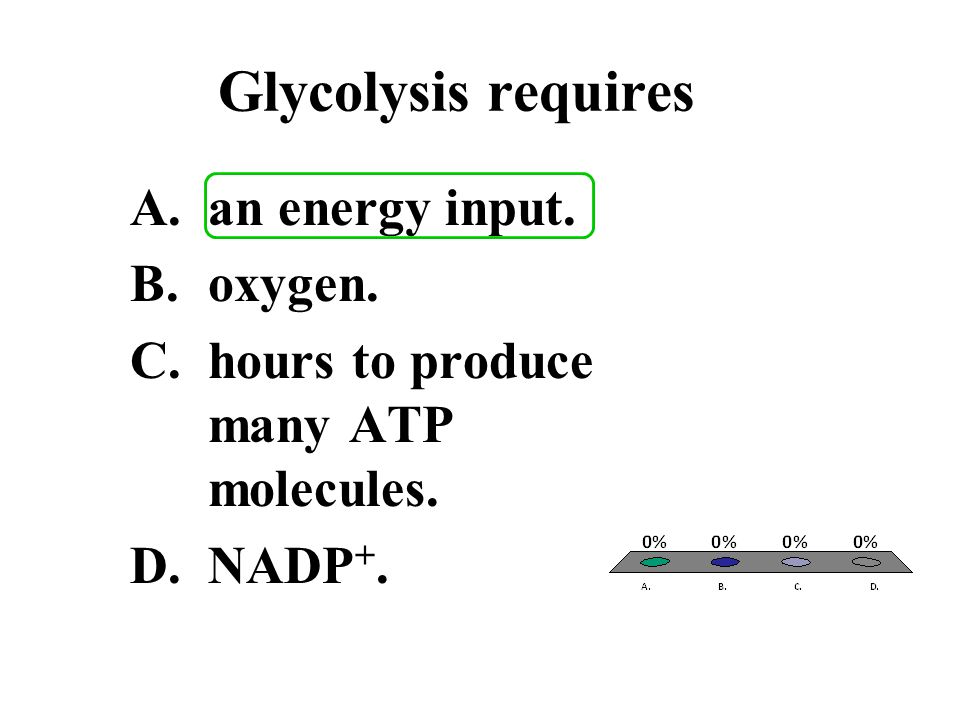 Glycolysis requires A.an energy input. B.oxygen. C.hours to produce many ATP molecules. D.NADP +.