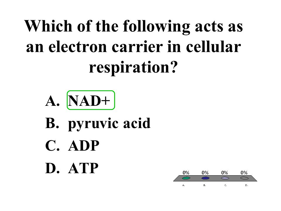 Which of the following acts as an electron carrier in cellular respiration? A.NAD+ B.pyruvic acid C.ADP D.ATP