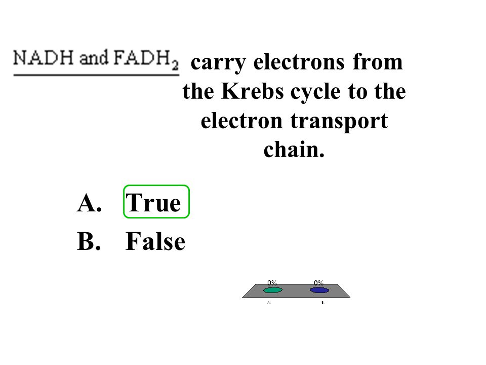 carry electrons from the Krebs cycle to the electron transport chain. A.True B.False