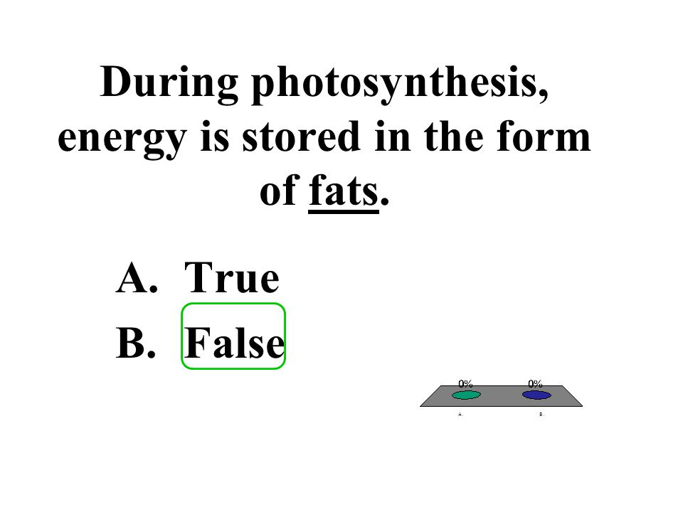 During photosynthesis, energy is stored in the form of fats. A.True B.False