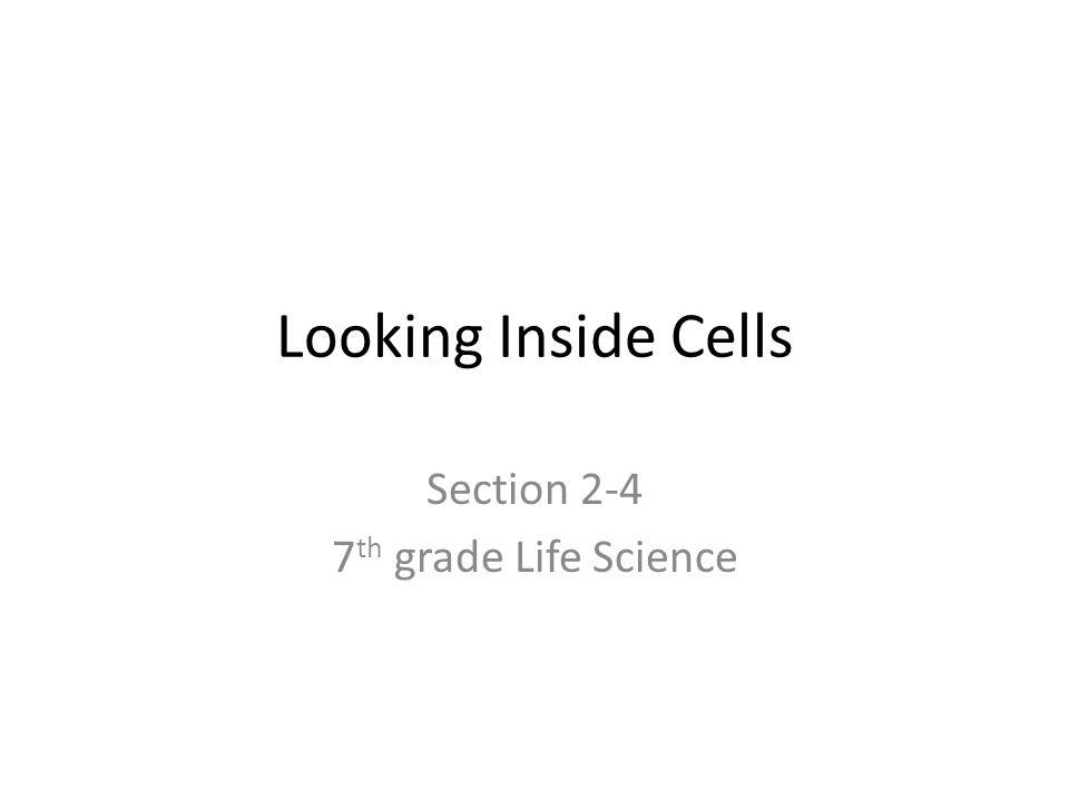 Looking Inside Cells Section 2-4 7 th grade Life Science