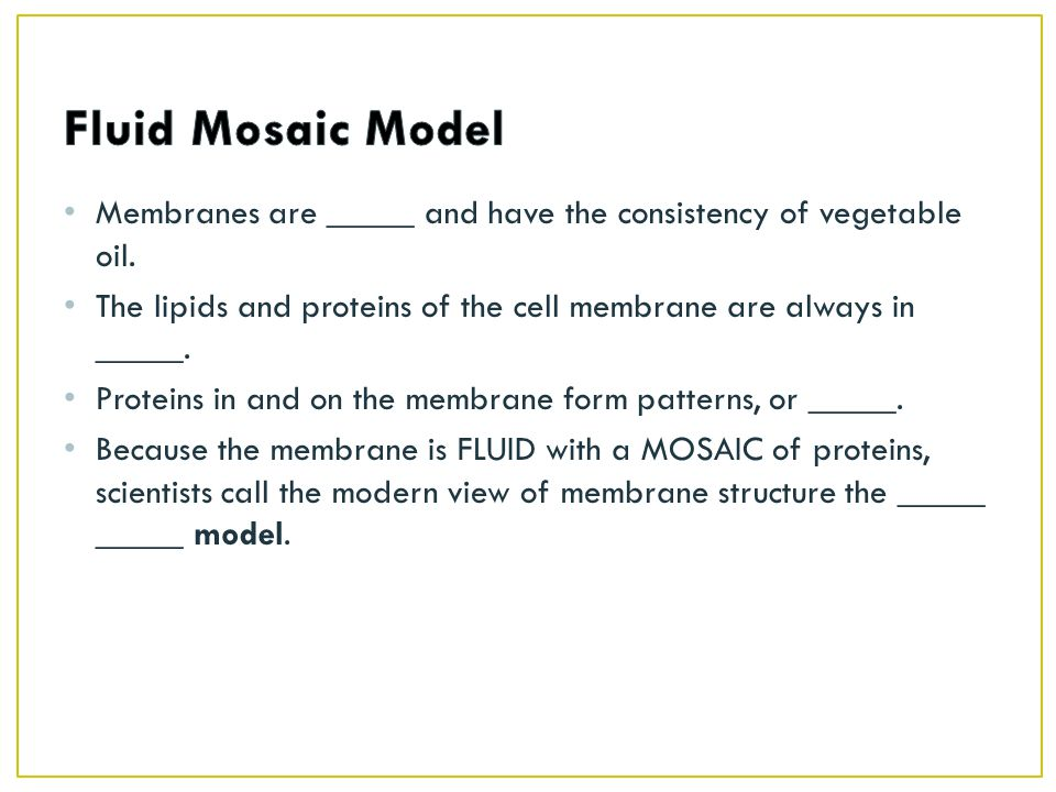 Membranes are _____ and have the consistency of vegetable oil.