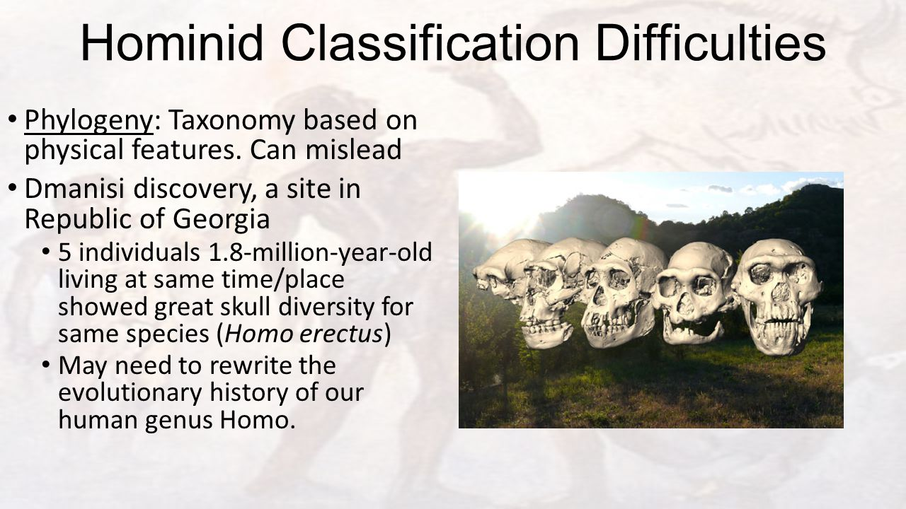 Hominid Classification Difficulties Phylogeny: Taxonomy based on physical features.