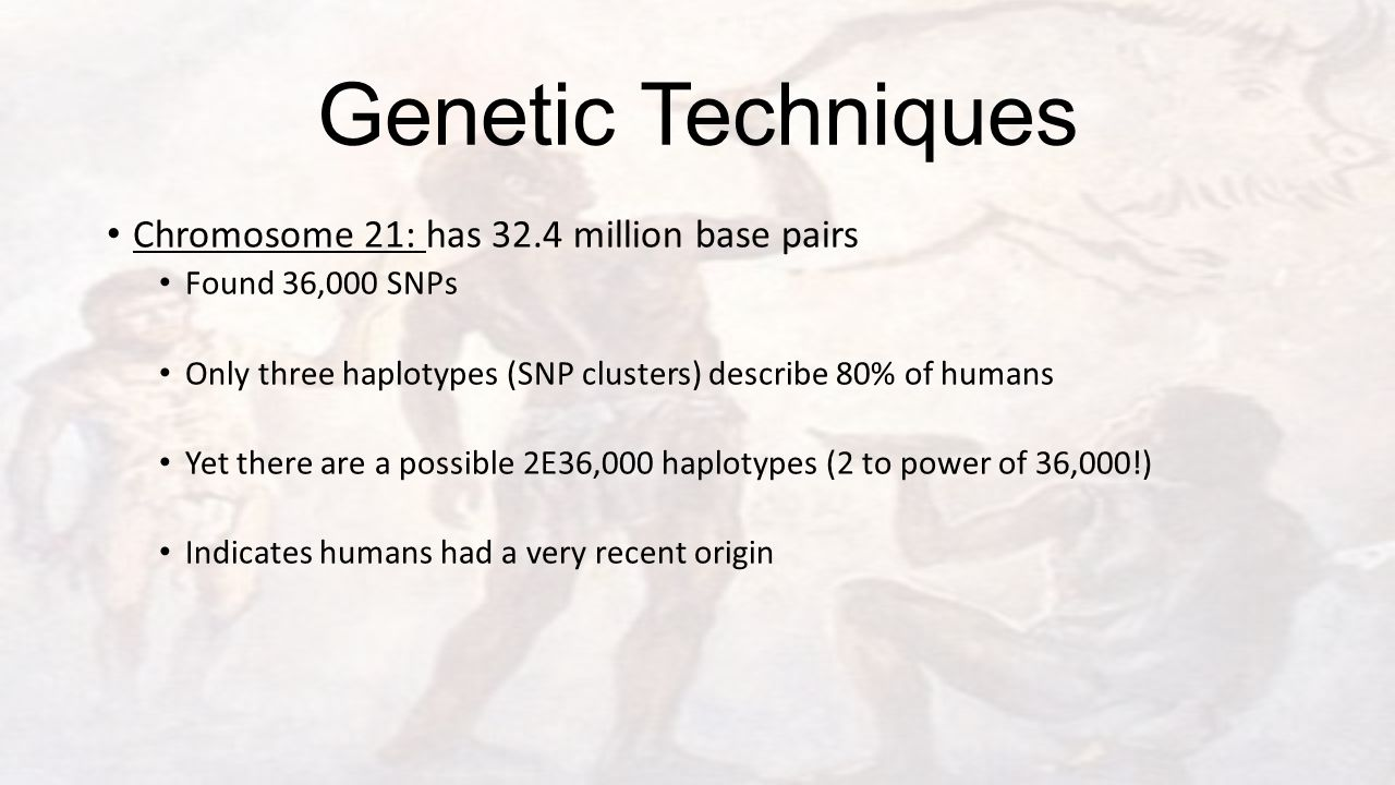 Genetic Techniques Chromosome 21: has 32.4 million base pairs Found 36,000 SNPs Only three haplotypes (SNP clusters) describe 80% of humans Yet there are a possible 2E36,000 haplotypes (2 to power of 36,000!) Indicates humans had a very recent origin