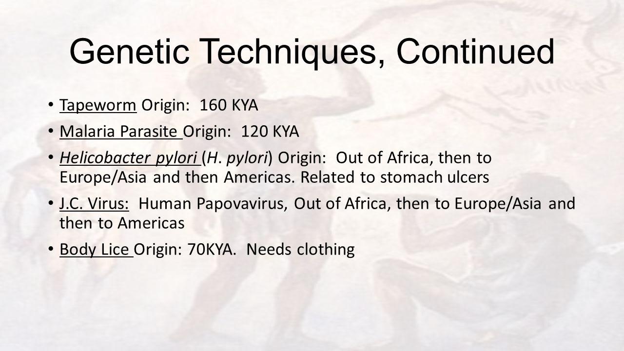 Genetic Techniques, Continued Tapeworm Origin: 160 KYA Malaria Parasite Origin: 120 KYA Helicobacter pylori (H. pylori) Origin: Out of Africa, then to
