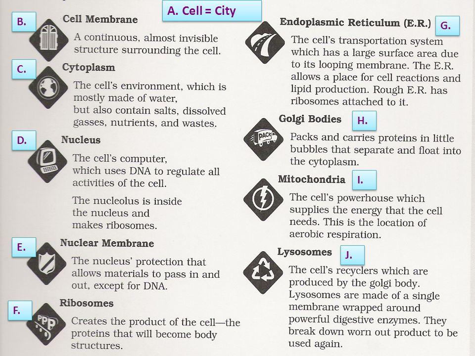 A. Cell = City B. C. D. E. F. G. H. I. J.