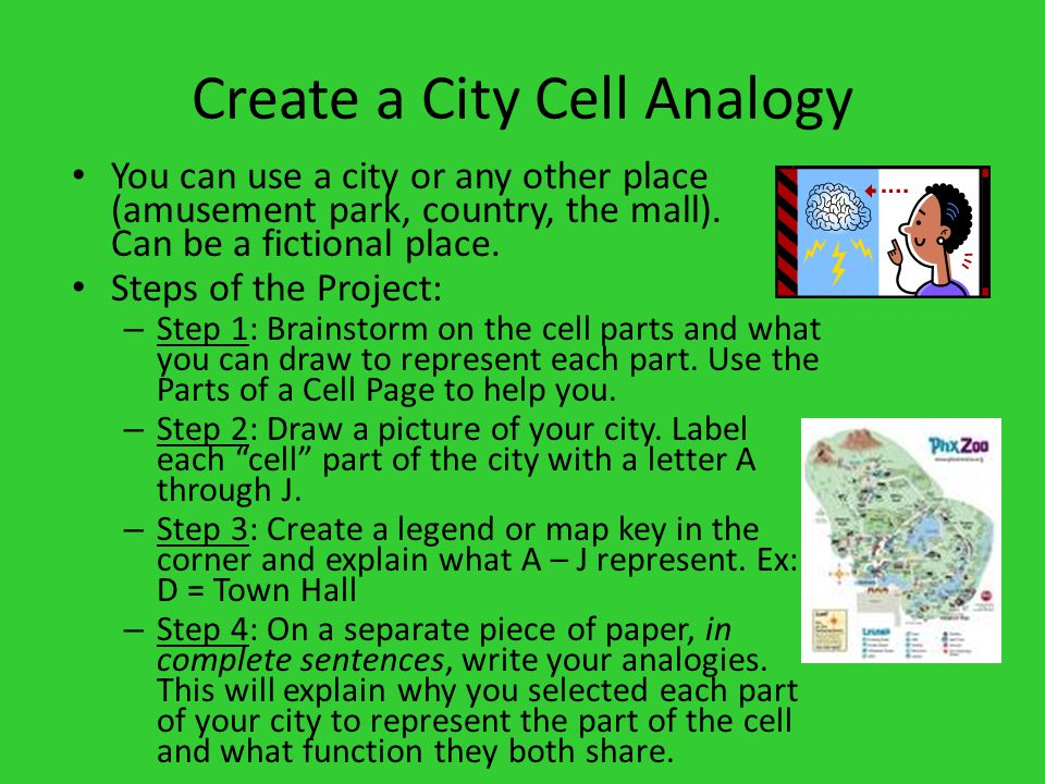 Create a City Cell Analogy You can use a city or any other place (amusement park, country, the mall).