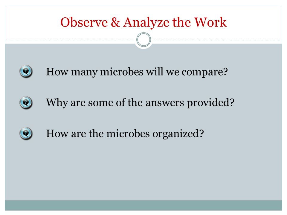 Observe & Analyze the Work How many microbes will we compare.