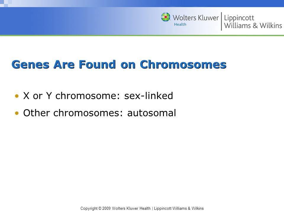Copyright © 2009 Wolters Kluwer Health | Lippincott Williams & Wilkins Genes Are Found on Chromosomes X or Y chromosome: sex-linked Other chromosomes: autosomal