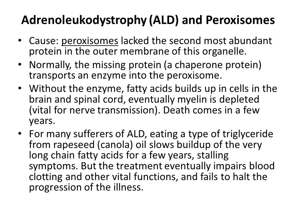 Adrenoleukodystrophy (ALD) and Peroxisomes Cause: peroxisomes lacked the second most abundant protein in the outer membrane of this organelle. Normall
