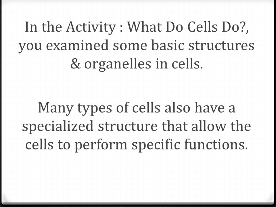 In the Activity : What Do Cells Do?, you examined some basic structures & organelles in cells. Many types of cells also have a specialized structure t