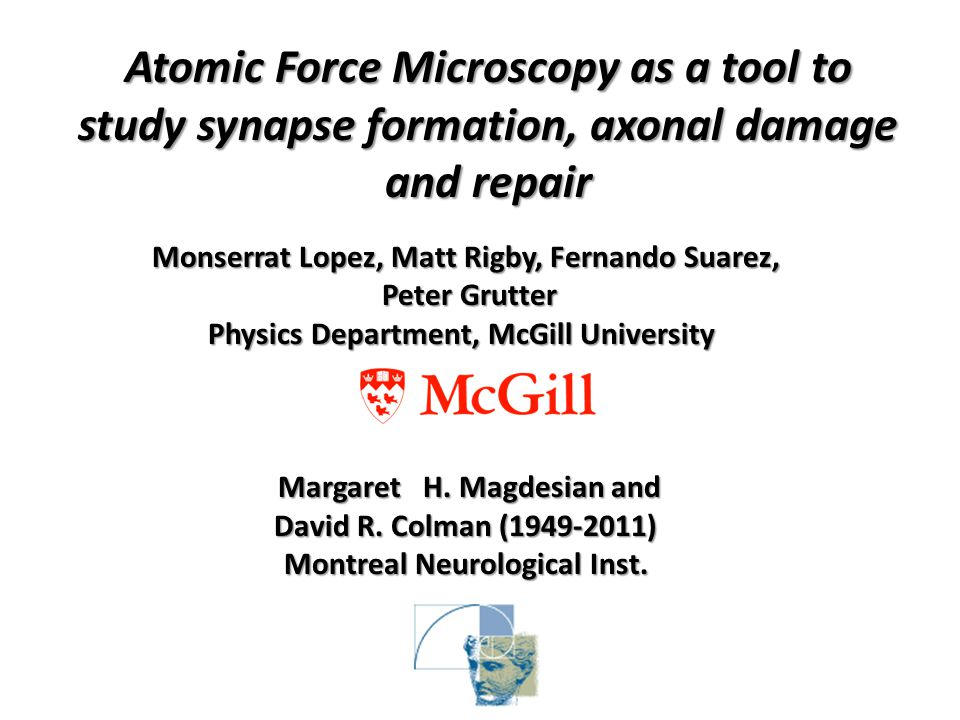 Monserrat Lopez, Matt Rigby, Fernando Suarez, Peter Grutter Physics Department, McGill University Margaret H.