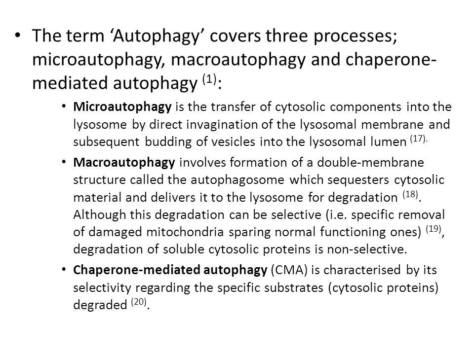 The term 'Autophagy' covers three processes; microautophagy, macroautophagy and chaperone- mediated autophagy (1) : Microautophagy is the transfer of