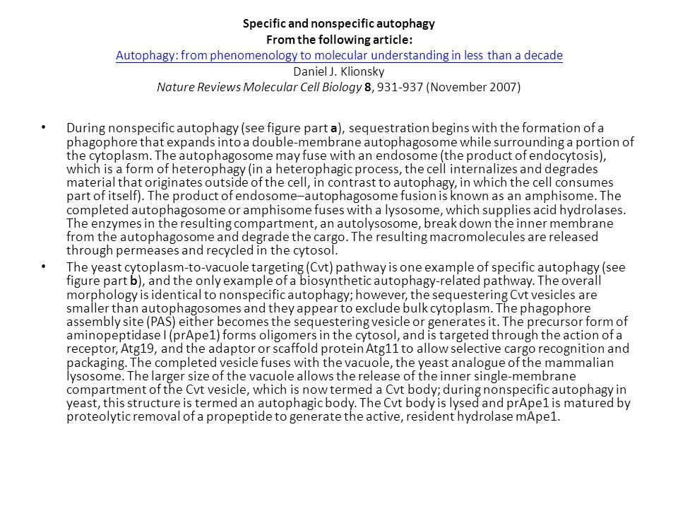 Specific and nonspecific autophagy From the following article: Autophagy: from phenomenology to molecular understanding in less than a decade Daniel J
