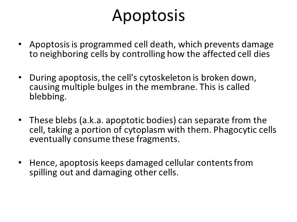 Apoptosis Apoptosis is programmed cell death, which prevents damage to neighboring cells by controlling how the affected cell dies During apoptosis, t