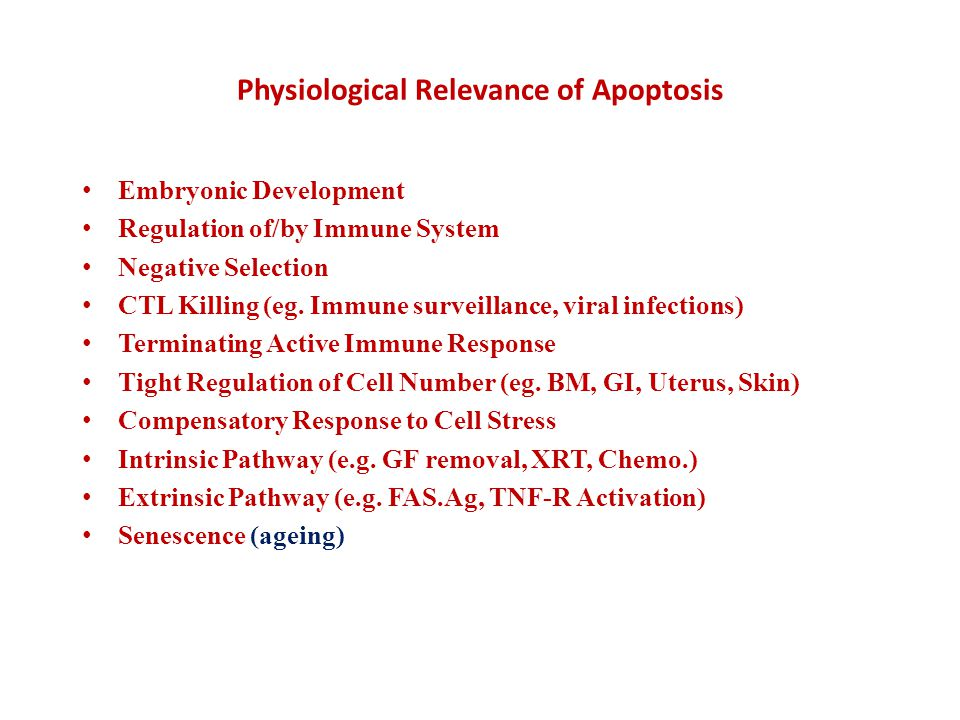 Autophagy and its inhibitors From the following article: Self-eating and self-killing: crosstalk between autophagy and apoptosis M.