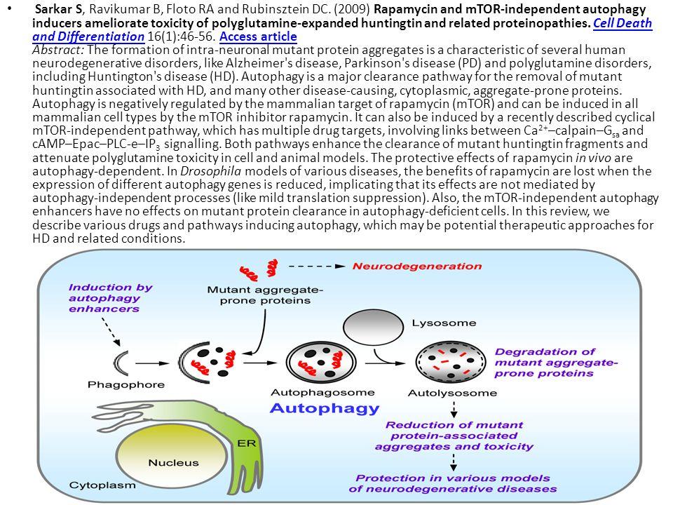 Sarkar S, Ravikumar B, Floto RA and Rubinsztein DC. (2009) Rapamycin and mTOR-independent autophagy inducers ameliorate toxicity of polyglutamine-expa