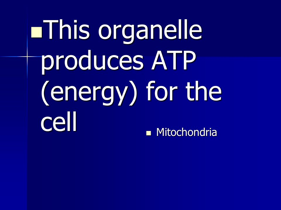 This organelle produces ATP (energy) for the cell This organelle produces ATP (energy) for the cell Mitochondria
