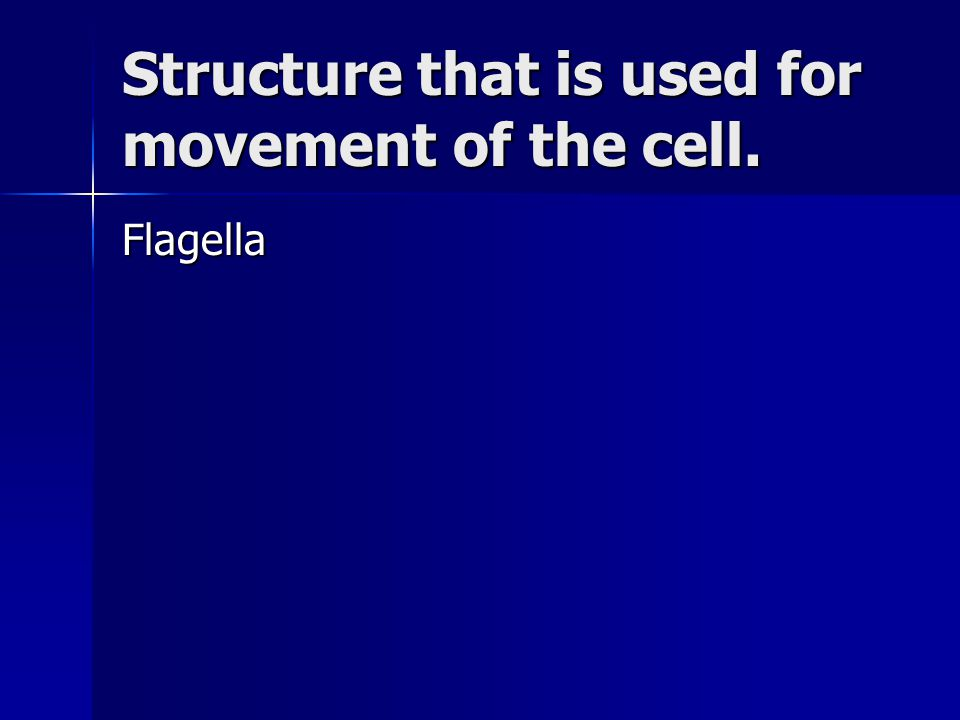 Structure that is used for movement of the cell. Flagella