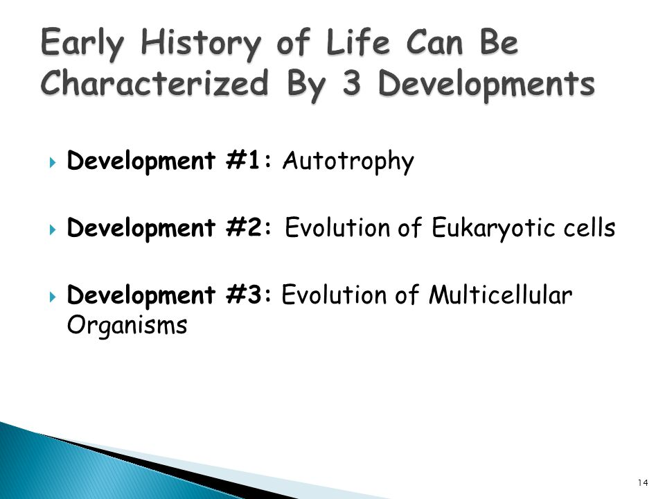  Development #1: Autotrophy  Development #2: Evolution of Eukaryotic cells  Development #3: Evolution of Multicellular Organisms 14