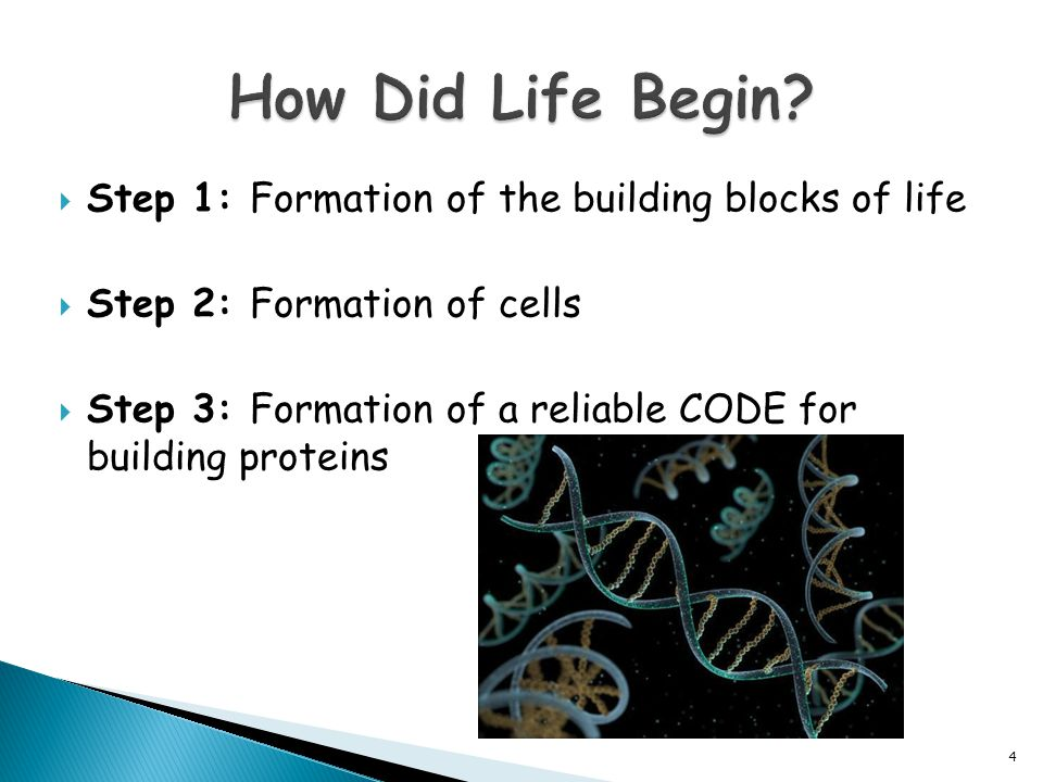  Step 1: Formation of the building blocks of life  Step 2: Formation of cells  Step 3: Formation of a reliable CODE for building proteins 4