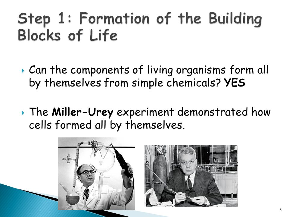  Can the components of living organisms form all by themselves from simple chemicals.