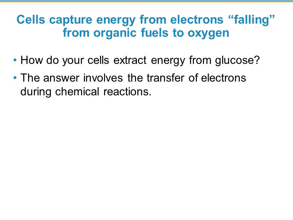 Cells capture energy from electrons falling from organic fuels to oxygen How do your cells extract energy from glucose.
