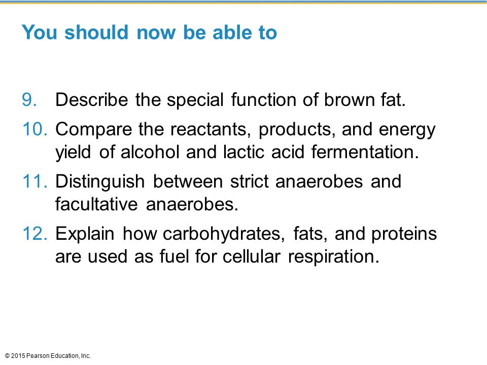 You should now be able to 9.Describe the special function of brown fat.